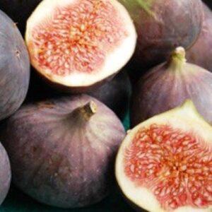 Feijoa's & Figs