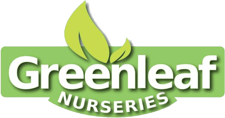 Greenleaf Nurseries